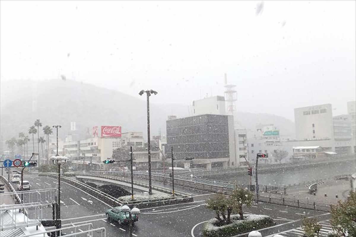 徳島市 雪 2016年1月19日