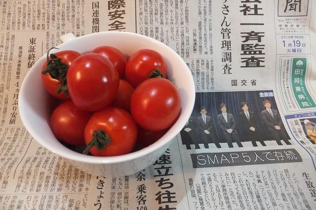 阿波市 いちごトマト 甘い