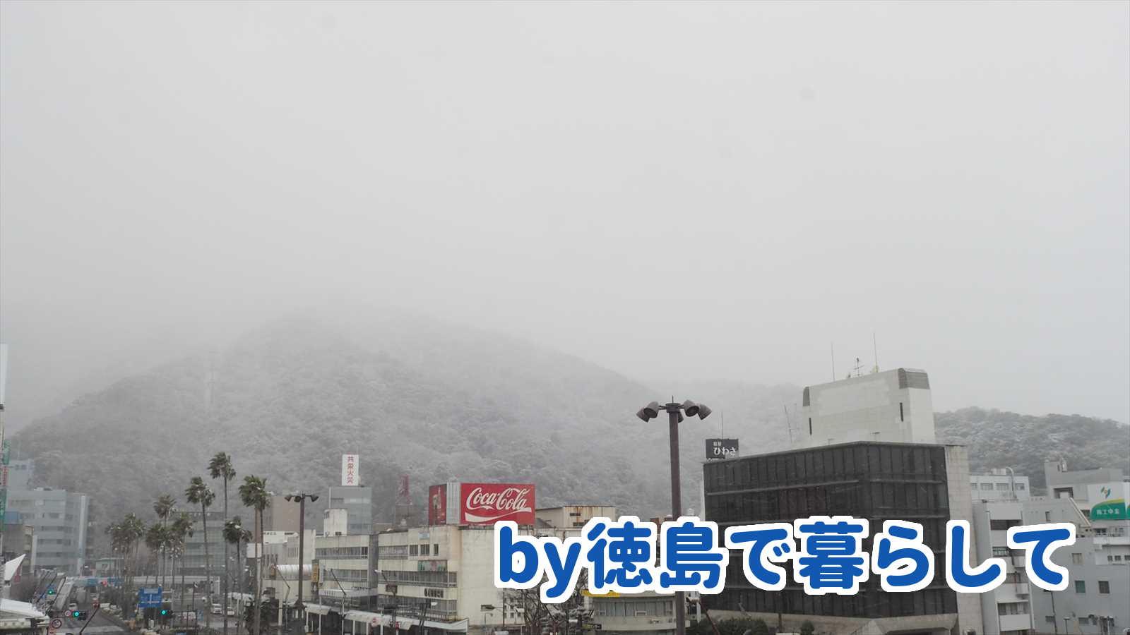 徳島市 雪
