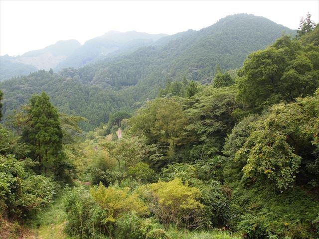 上勝町 YAMABIKO MUSIC FESTIVAL ステージ裏の山