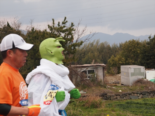 仮装ランナー とくしまマラソン2019