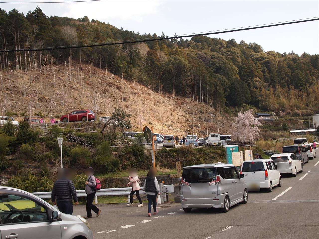 徳島県神山町鬼籠野 ゆうかの里 駐車場