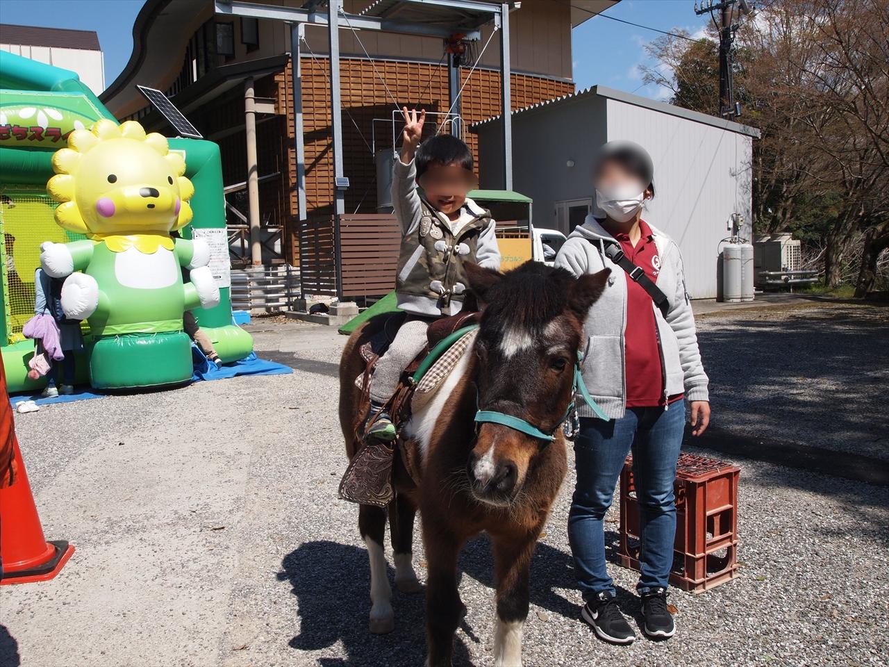 ポニーの体験乗馬 もみじ川温泉 さくら祭り