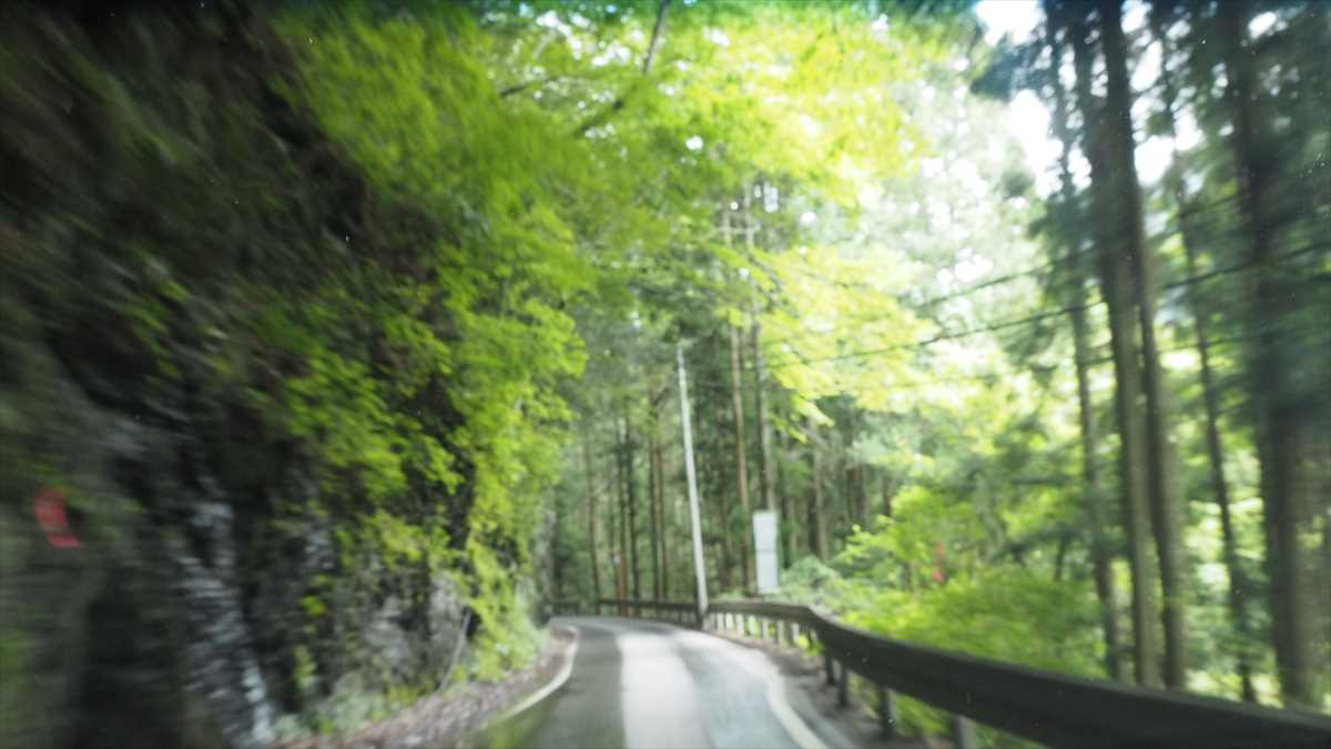 奥祖谷二重かずら橋 天空の村・かかしの里 徳島県三好市東祖谷菅生(すげおい) ルート 道路画像