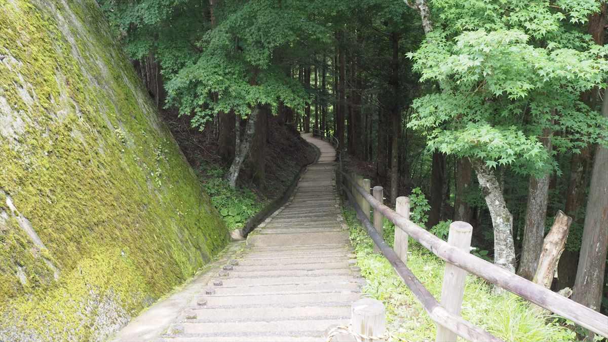 奥祖谷二重かずら橋 駐車場 東祖谷山村名頃 階段を下りる