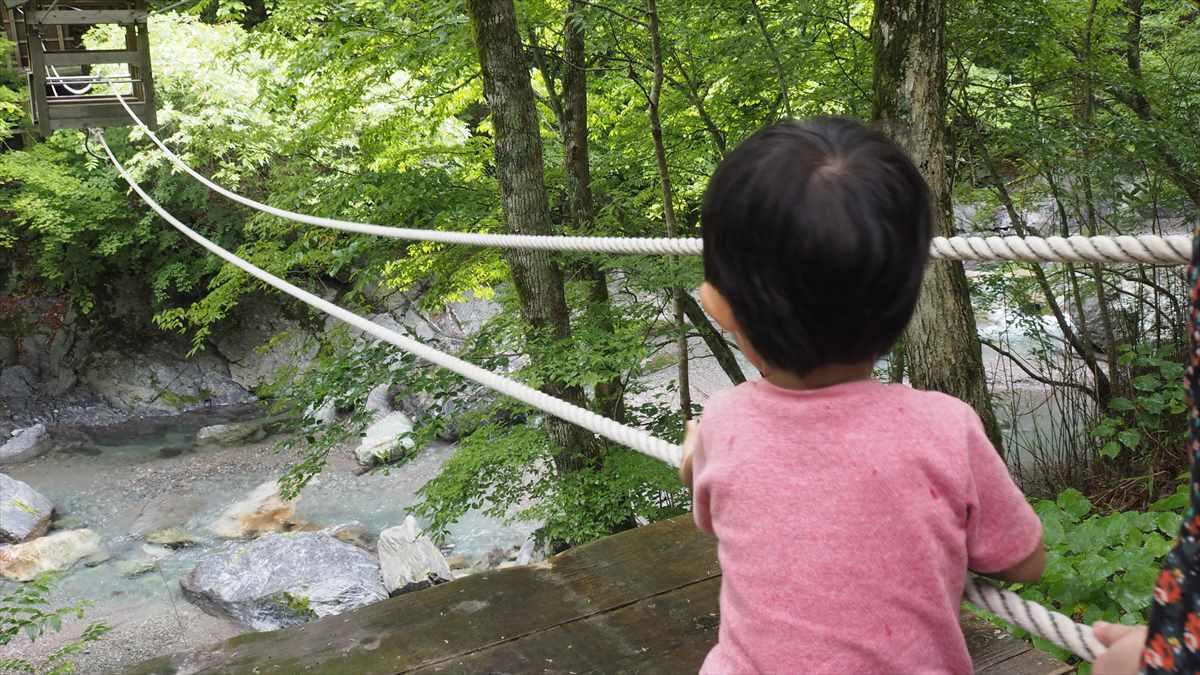奥祖谷二重かずら橋 野猿