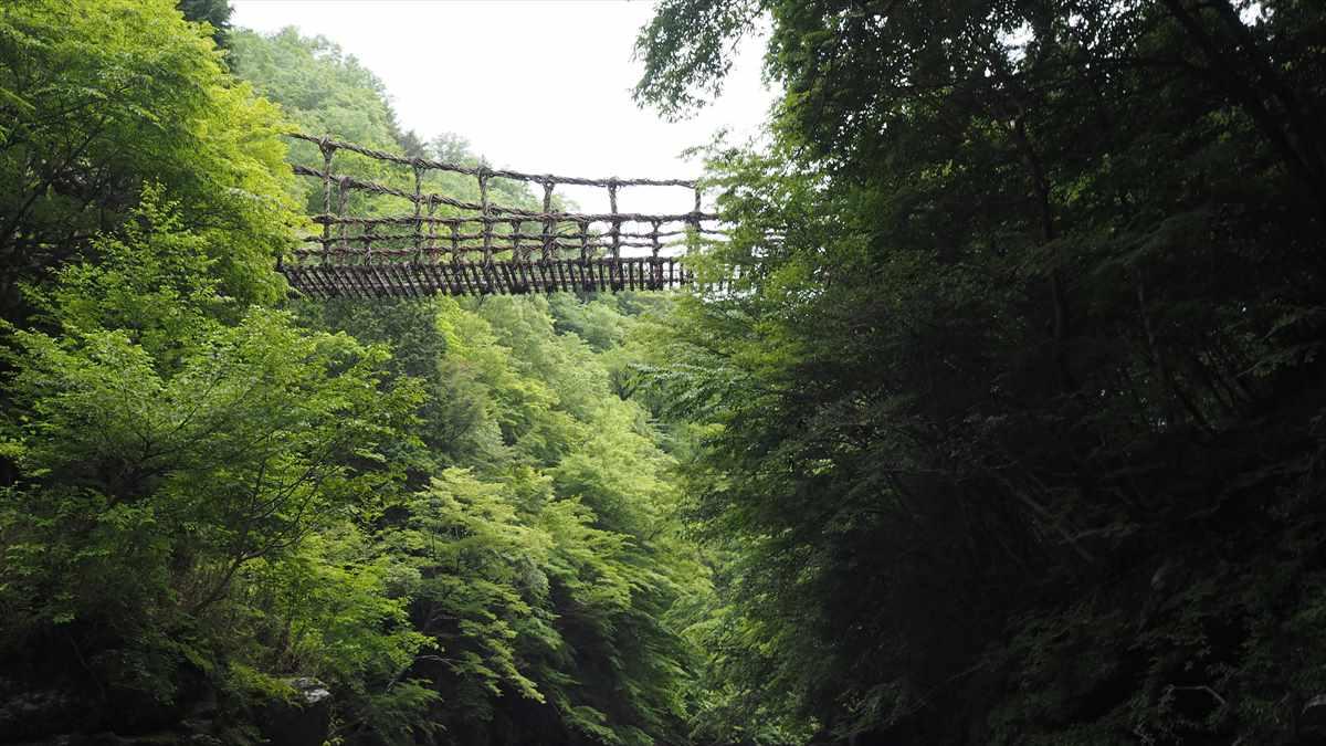 奥祖谷二重かずら橋 男橋(おばし)