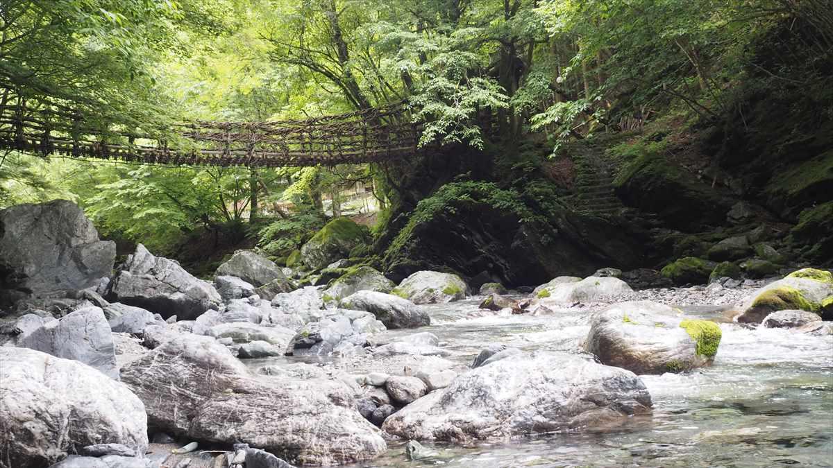 奥祖谷二重かずら橋 女橋(めばし)