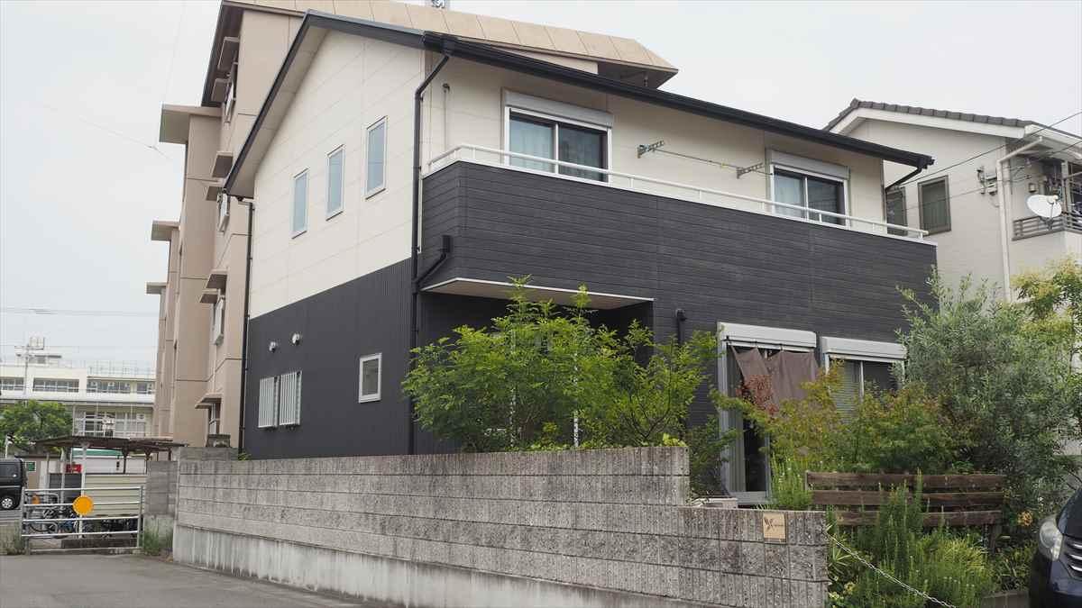カワセミデザイン舎 藍住町 ワードプレス web チラシ